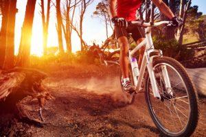 Шоссейный велосипед или МТБ – что выбрать?